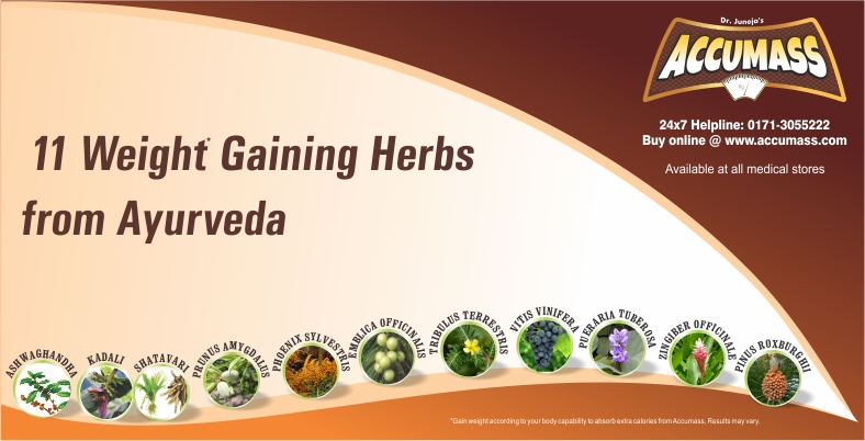 11-weight-gaining-herbs-from-ayurveda-accumass