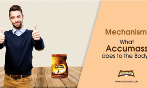 Mechanism: What Accumass does to the body?