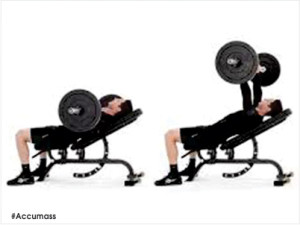 Barbell-Bench-Press